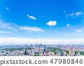 [Tokyo] City landscape 47980846