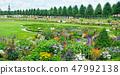 Exquisite flower bed in a public park.  47992138