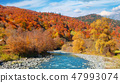 Panoramic landscape mountain river valley. 47993074