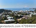 從Zushi市辦公室山的Zushi碼頭Enoshima富士方向的看法 47994609