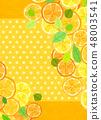 感覺柑橘拼貼畫 48003541