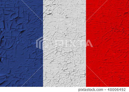 France painted flag 48006492