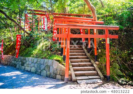 쓰루 오카 하치만 구 (鶴が丘 하치만 구) · 마루야마이나 리 사 48013222