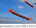 Kite flying caterpillar flying against the sky 48014333