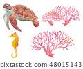 바다 생물 - 바다 거북, 산호 해마 48015143
