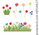 Spring flowers growing in the garden. Tulips, daffodils and other flowers 48016617