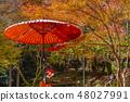 코우 묘지 교토 나가오카 48027991