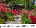 코우 묘지 교토 나가오카 48027995