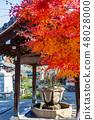 코우 묘지 교토 나가오카 48028000