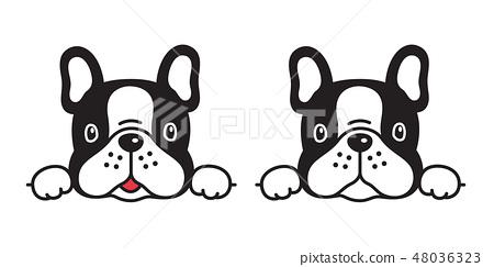 dog vector french bulldog icon character cartoon 48036323