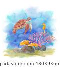 바다 생물 - 바다 거북과 해마 48039366
