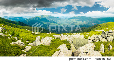 panorama of mountain landscape in summer 48040168