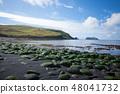 Vestmannaeyjar island beach day view, Iceland  48041732