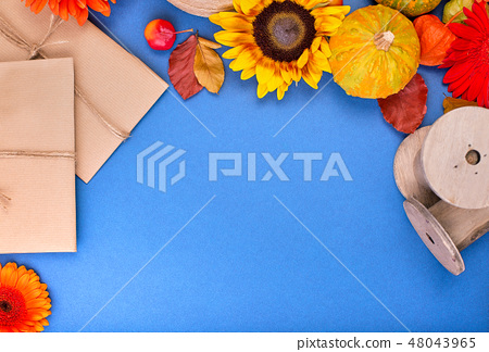 Top view of handcraft gift box, yellow and orange flowers and pumpkins on blue background. Blank 48043965