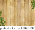 背景 - 牆壁 - 木五穀 - 葉子 - 常春藤 - 春天 - 夏天 48048892