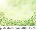 Fresh green - leaves - green - arch - frame 48051574