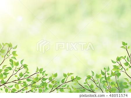 新鮮的綠色 - 葉子 - 綠色 - 曲拱 - 框架 48051574