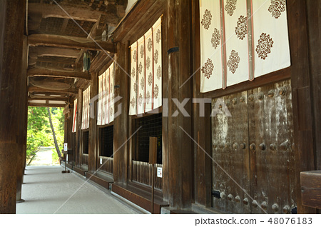 奈良·Toshodaiji寺 48076183