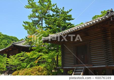 奈良·Toshodaiji寺 48076189