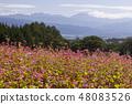 Red Soba no Sato / Minowa-cho Nagano Prefecture 48083526