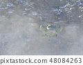 눈보라를 일으키는 헬리콥터 48084263