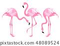 Pink Flamingo Set 48089524