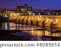 Bridge and Mosque Cathedral of Cordoba at Night 48089656