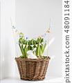 Decorative rabbit in flower pot. 48091184