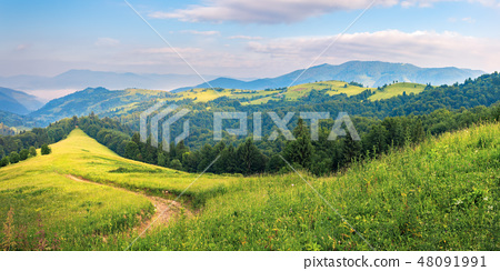 panorama of a summer countryside in mountains 48091991