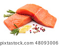 fillet of red fish salmon with lemon and rosemary isolated on white background 48093006
