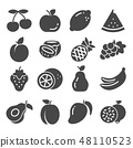 Fruit icon set collection  48110523