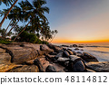 Romantic sunset on a tropical beach with palm trees 48114812