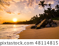 Romantic sunset on a tropical beach with palm trees 48114815