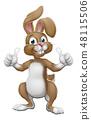 复活节 兔子 兔 48115506