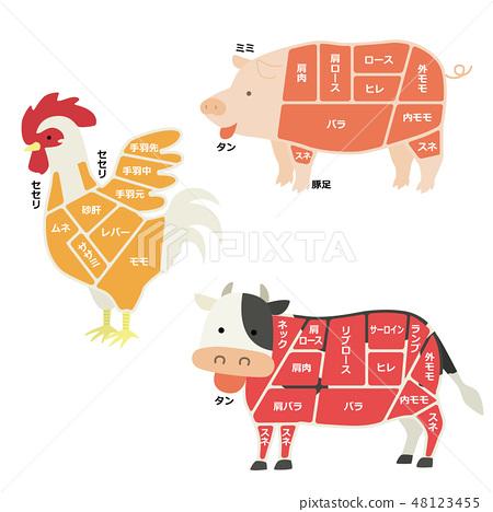 고기가되는 동물의 일러스트 (부위 설명 있음) 48123455
