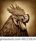 Bird Flu 48125814