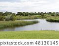Wild bird forest 48130145