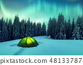 Northern lights in winter forest 48133787