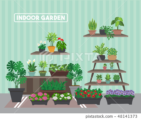 House indoor vector plants and nature homemade  48141373