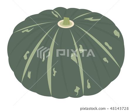pumpkin 48143728