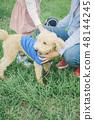狗和Osanpo圖像 48144245