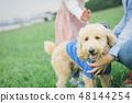 狗和Osanpo圖像 48144254