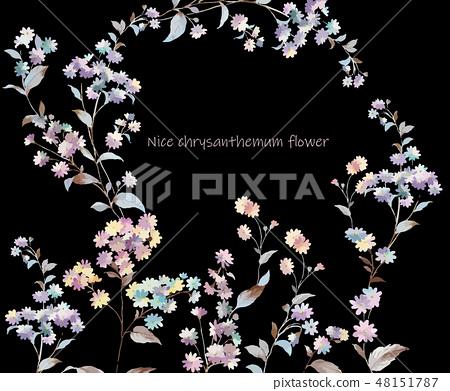 다채로운 작은 국화 꽃 그림 48151787