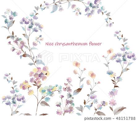 五顏六色的小小菊花花卉插畫 48151788