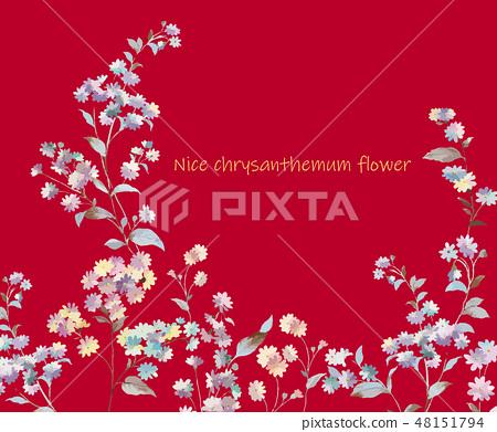 Colorful little chrysanthemum flower illustration 48151794
