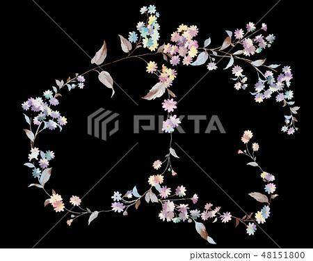 五顏六色的小小菊花花卉插畫 48151800