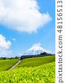 【靜岡縣】富士山和茶園 48156513