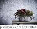 Arrangement Flower of Anthurium Anthurum 48161048