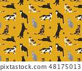 고양이 패턴 소재 48175013