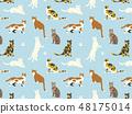 貓圖案材料 48175014